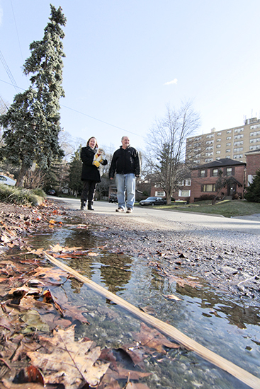 Neighbours Susan Sullivan and Herman Franch stand on Glen Davis Crescent, where ground water is leaking steadily on both sides of the road and, in colder weather, freezing into large ice sheets covering up to half the width of the road. The city's transportation and water divisions are investigating to see how they can keep the road clear of ice and to find the source of the water. PHOTO: Andrew Hudson