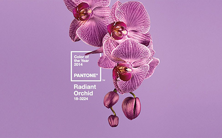 Radiant Orchid is the colour of the year, according to the Pantone Colour Institute. There are no guarantees it will reproduce accurately on newsprint, but Welcome @ Home columnist Mary Fran McQuade does her best to describe the hue's defining characteristics.