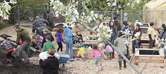 Families at the reopened Woodfield Rail Garden fill raised  beds set aside for children and community use at a Victoria Day work bee on May 17. The gardeners are seen through the petals of a serviceberry tree, one of several fruit and pollinator trees planted by park staff along a hill on the garden's east side. PHOTO: Andrew Hudson