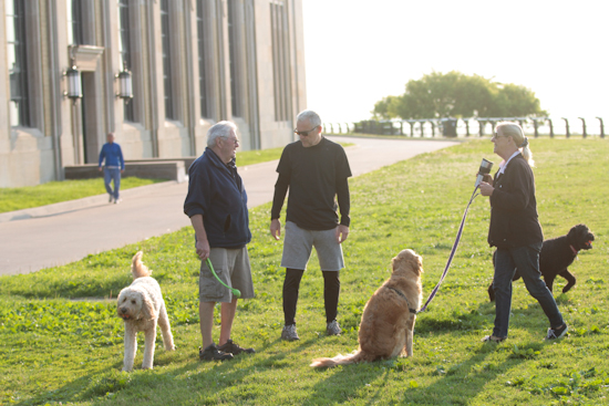 two of the  7 a.m. regulars who bring their owners for a walk along the grounds of the R.C. Harris Water Treatment Plant enjoy the morning sun on July 3.