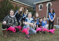"""The 7th Toronto Girl Guides have been """"flocking"""" unsuspecting Beachers in an attempt to raise money for a trip to Newfoundland this summer."""