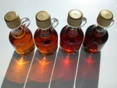 main menu-Syrup_grades_large-by Dvortygirl-wikimedia commons