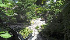 garden tour_DSC_7175