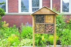 "Pollinator hotels are a fixture outside of St. Saviour's Anglican Church on Swanwick and Kimberley. ""Our gardener and next door neighbour (Virginie of Treemobile - who I believe the Beachmetro wrote about last year) installed them this year. The pollinator palaces are meant to attract honey bees, lacewings, ladybugs etc. It gives them a place to stay over the winter. (Each year the wood should be replaced).  Virginie's husband made the palaces, as well as the 2 wooden worm composter boxes,"" said pastor Shelley McVea."