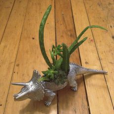 garden triceratops