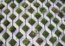Permable pavers, like these, help direct rainwater away from storm sewers and back into the ecosystem.