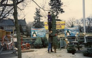 Pete and Steve with a particularly large tree at the Beaches Lions Tree Sale at Kew Gardens in the '90s.